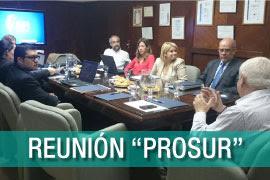 PROSUR,-proyecto-de-Propiedad-Industrial-para-el-desarrollo-de-Suramérica_interna
