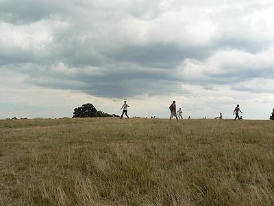 Hampstead heath 1.jpg