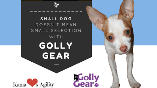 Small Dog Doesn't Mean Small Selection at Golly Gear