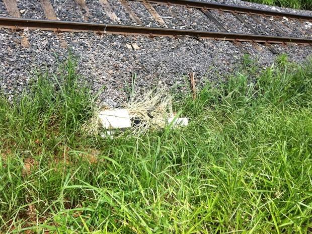 Corpo do jovem foi encontrado próximo à linha férrea (Foto: Felipe Bella/TV TEM)