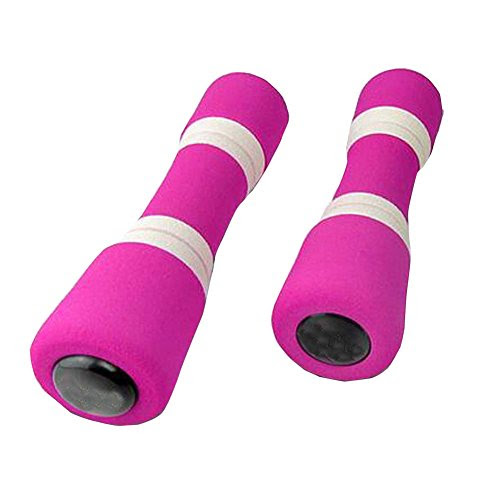 Useful Adults Exercise Accessories Hand Weights Dumbbells Set of 2