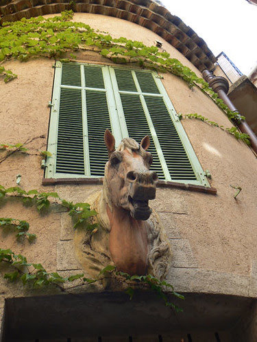 antibes, cheval.jpg