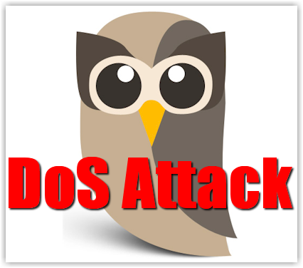 One Hacker Disables HootSuite in DoS Attack - BlogAid