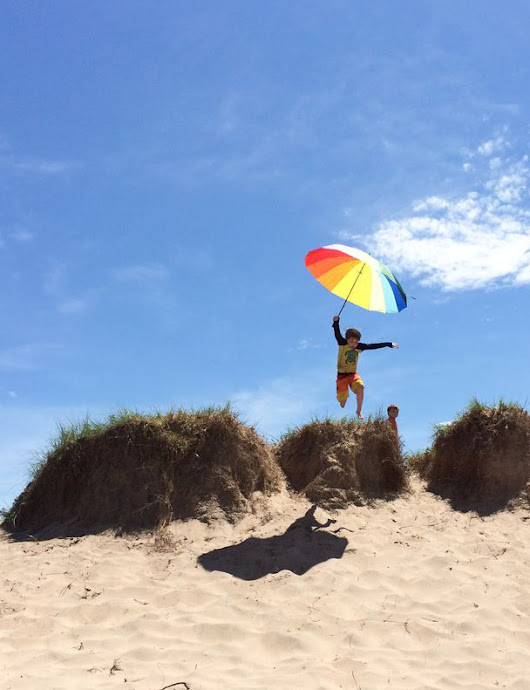 Jump into summer fun this June at Wisconsin state park system properties