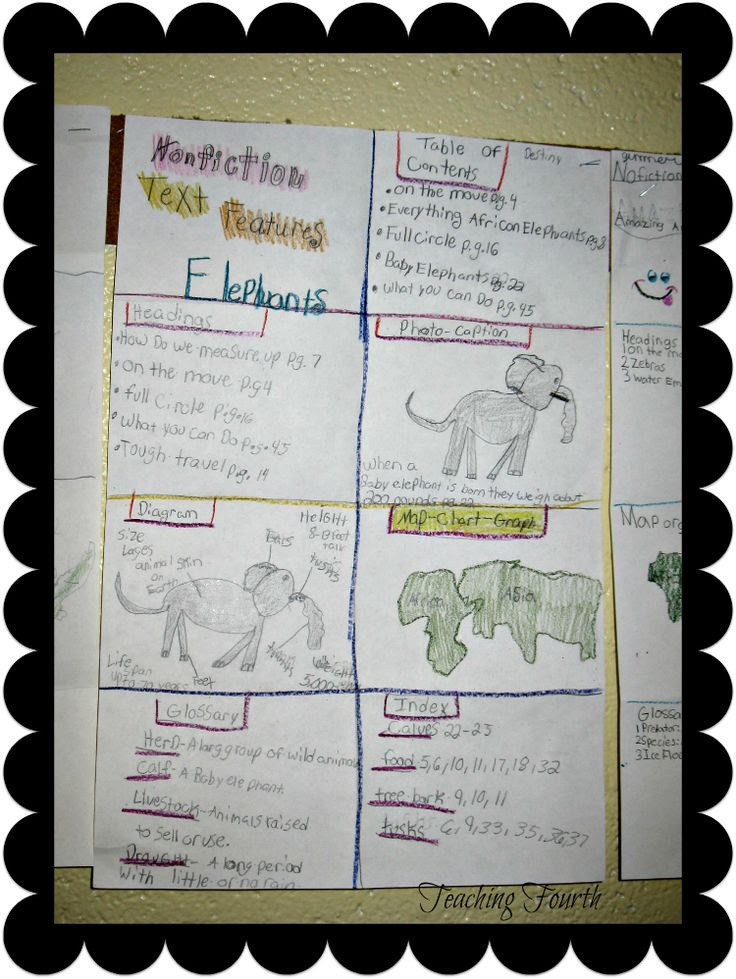 Nonfiction Text Features Activity