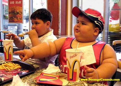 Warning: Childhood Obesity…A Health and Learning Risk (You Are What You Eat)