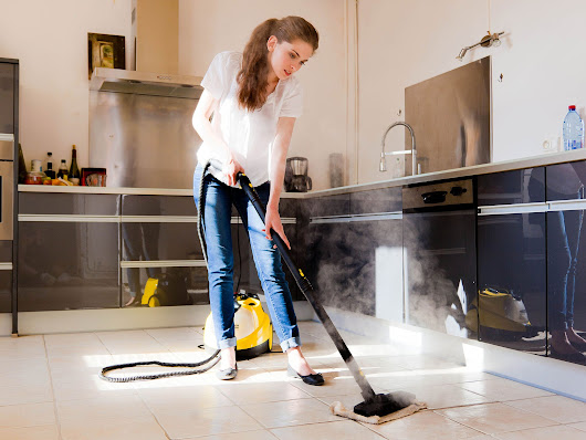 8 best steam cleaners