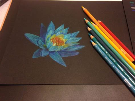 blue lotus   moonlight   prismacolor colored