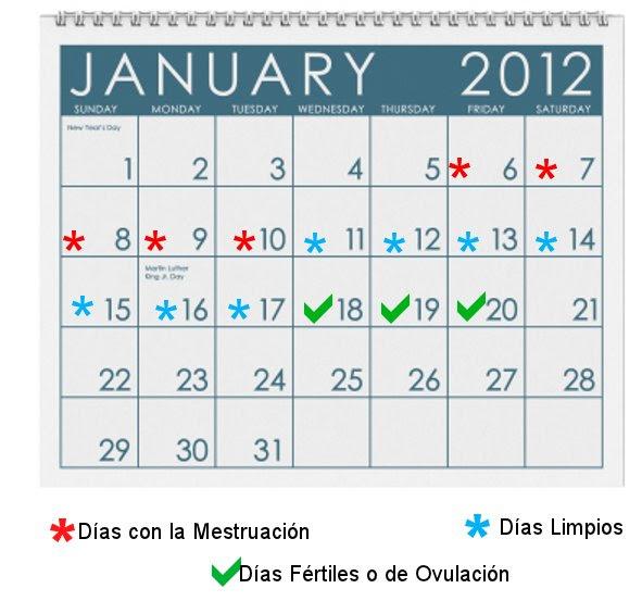 Calendario De Mis Dias Fertiles.Calculadora Mis Dias Fertiles Y Ovulacion