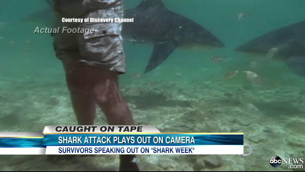 Shark Week 2013: Shark Attack Caught on Tape in 1994 ...