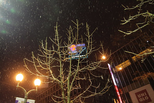 Snowing at night in Sapporo