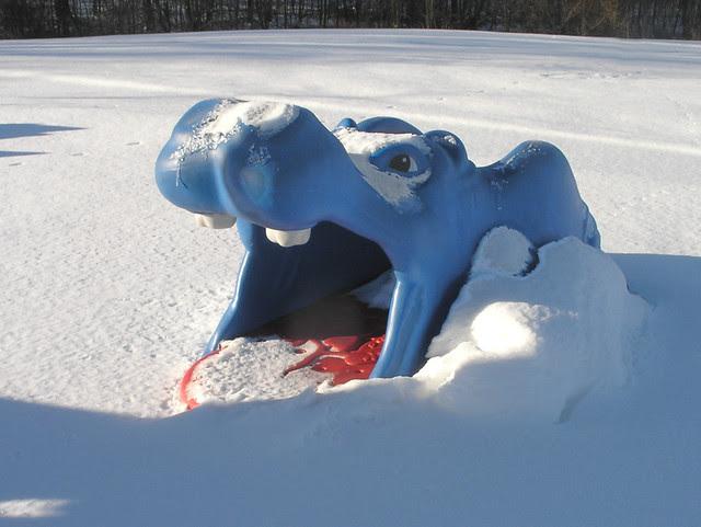 hippo thermia