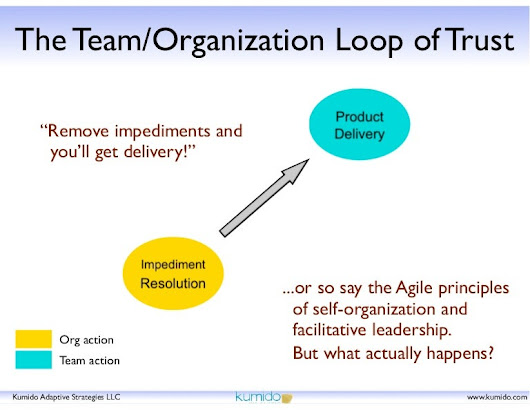 The Team/Organization Loop of Trust