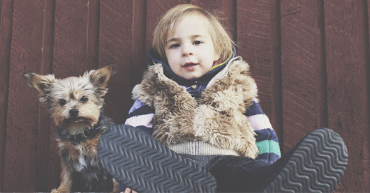 Love Your Pet Day: Teaching Kids About Raising a Pet