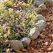 DIY Desert Landscaping Ideas from Coachella Valley Landscapers - Whitewater Rock & Supply Co.
