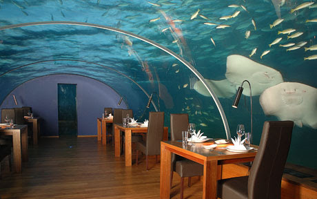 The World's First All-glass Undersea Restaurant
