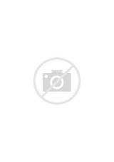 Black Beans Nutrition Facts Carbs