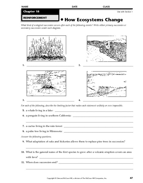 Ecological Succession Worksheet. Worksheets. Releaseboard Free printable Worksheets and Activities
