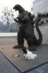 with Godzilla