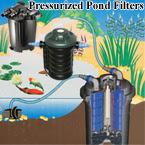 Pond Filtration, maintenance, clear water