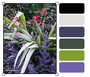 landscaping_palette