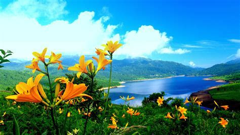 Free Nature Wallpapers Background at Landscape » Monodomo