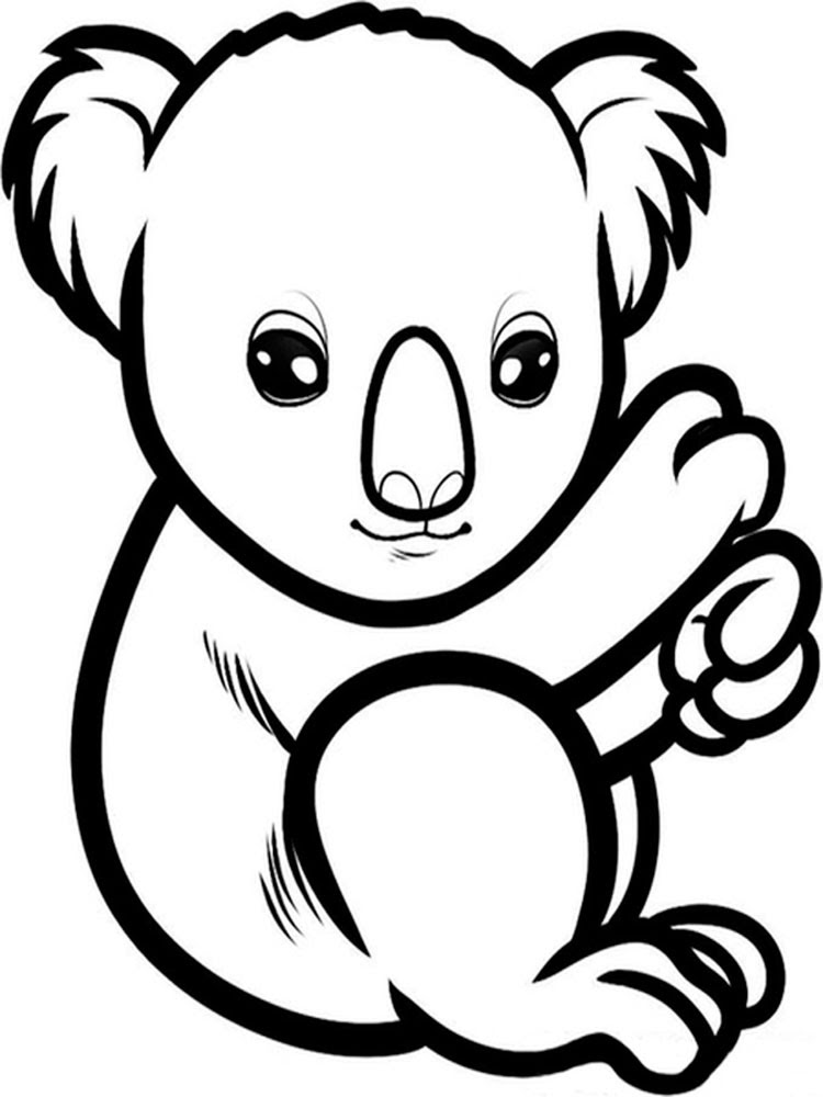 Koala animal coloring pages 345