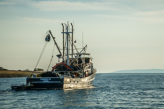 Update: Italy And Croatia Agree To Three Year Fishing Ban in Jabuka Pit
