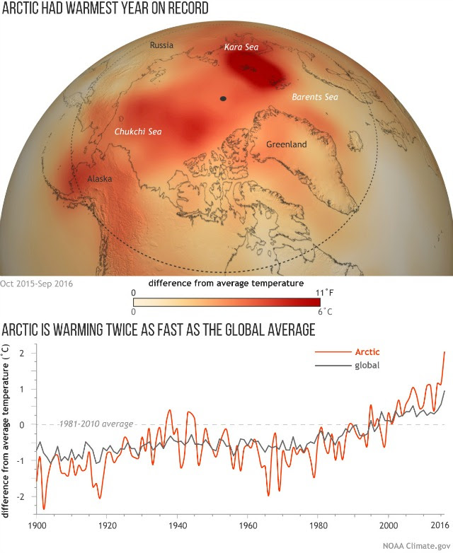(map) Temperatures across the Arctic from October 2015-September 2016 compared to the 1981-2010 average. (graph) Yearly temperatures since 1900 compared to the 1981-2010 average for the Arctic (orange line) and the globe (gray).  NOAA Climate.gov map based on NCEP reanalysis data from NOAA's Earth System Research Lab. Graph adapted from Figure 1.1 in the 2016 Arctic Report Card.