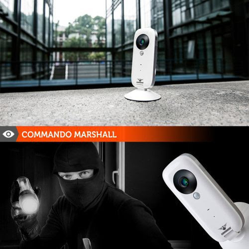 What Happens when an intrusion occurs? | CHANGE Networks | Security and Surveillance Products