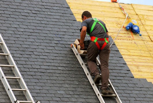Need a New Roof? Look at Your Options - Business Guide Ottawa