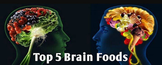 Five Common Food Items Which Improve Memory - We The Brainys