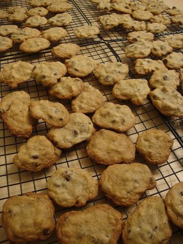 Mmmm cookies!