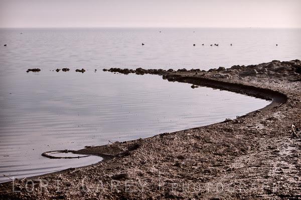 Curves, Salton Sea shoreline