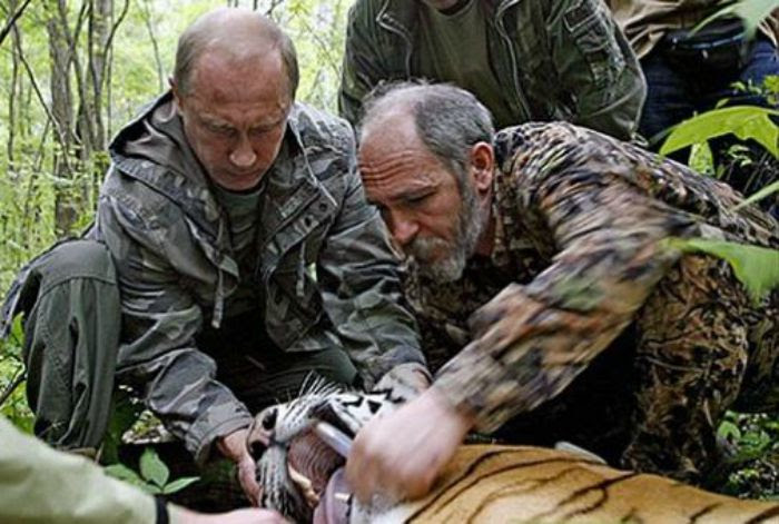 Image result for putin with tiger
