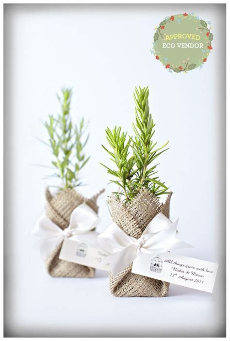 115 best images about Growing gift favors on Pinterest