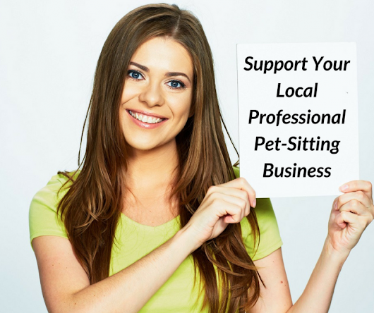 3 reasons your local professional pet sitter is your best pet-care option
