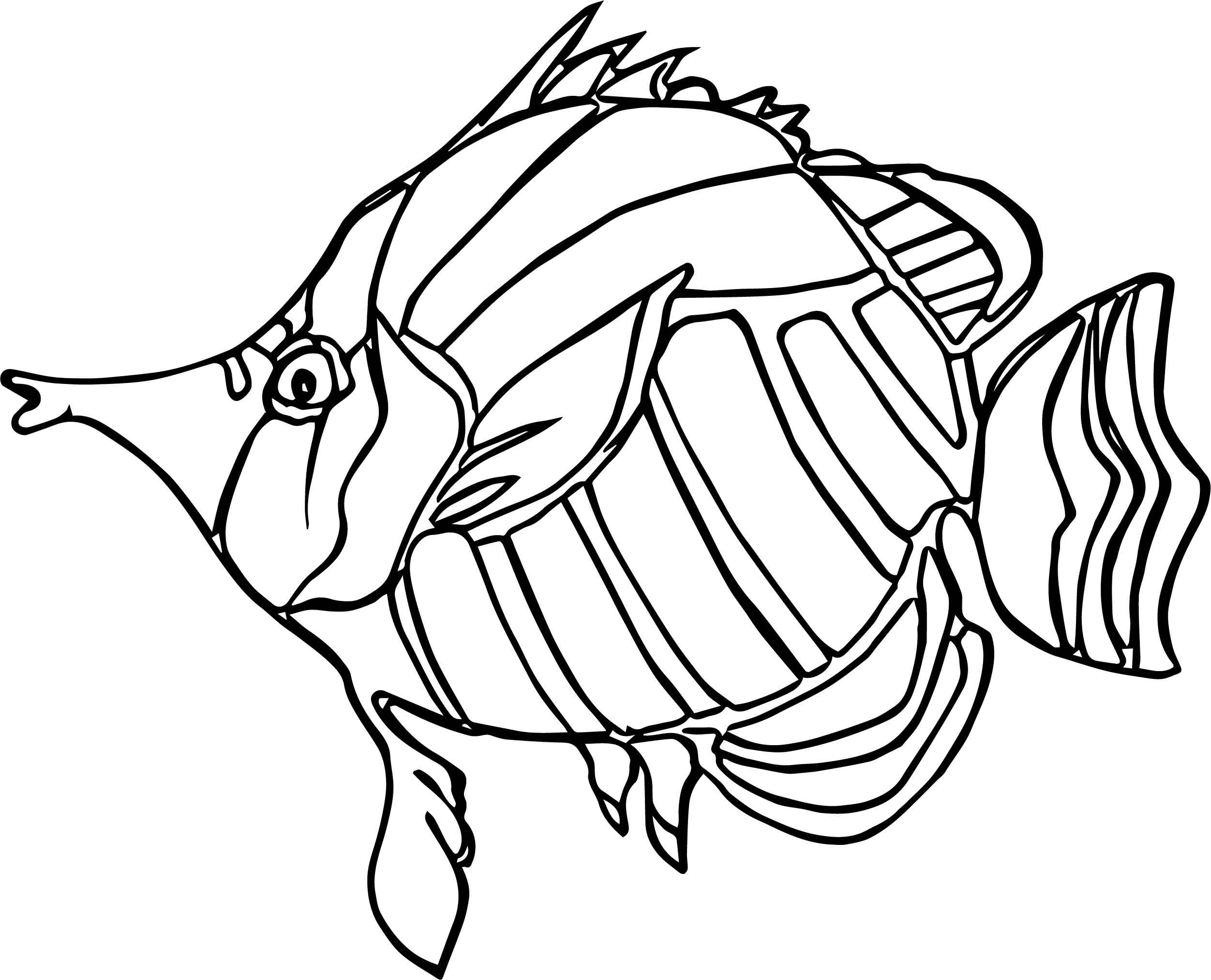 Ancient Angel Fish Coloring Page | Wecoloringpage.com