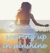 Soaring Up In Sunshine