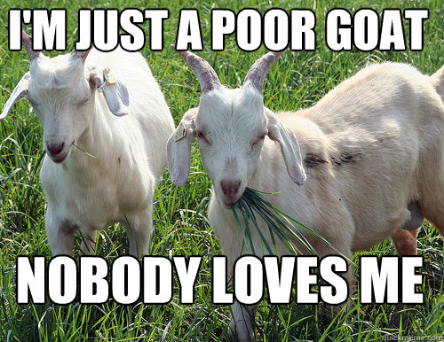 Im Just A Poor Goat Nobody Loves Me Goat Quotes Quickmeme