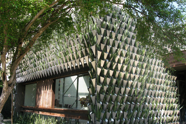 0 biomimicry architecture Brazil Sao Paolo concept store Firma Casa vertical garden green eco building mother in laws tongue succulents plants