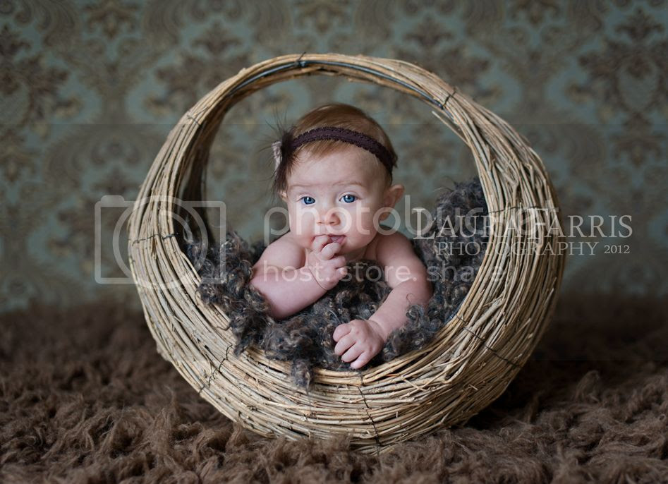 boise infant photographers