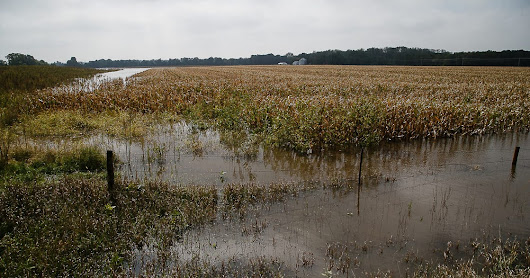 Climate change means more flooding for Iowa, scientists say