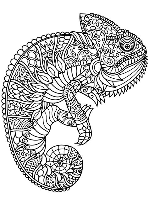 animal coloring pages  coloring animals dog