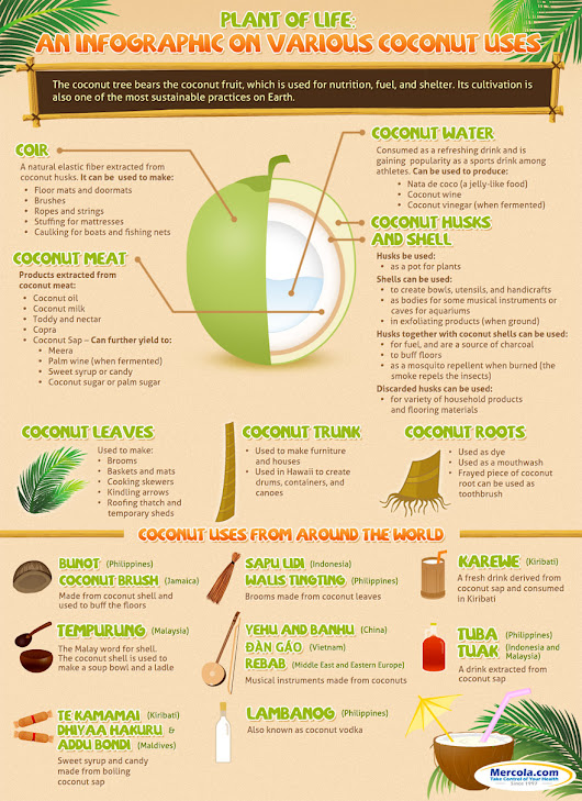 media.mercola.com/assets/images/infographic/coconut-uses.jpg