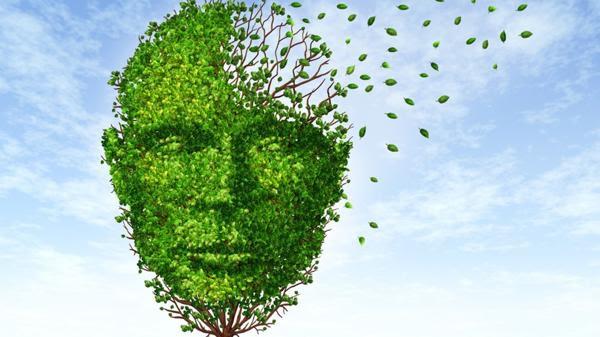 El nuevo fármaco podría ralentizar el deterioro de las capacidades cognitivas(Shutterstock)