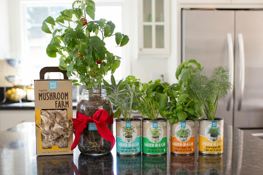Make Home Gardening Fun with Back to the Roots