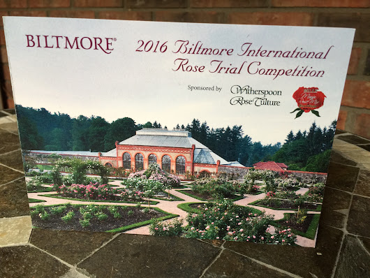 Biltmore International Rose Trials 2016