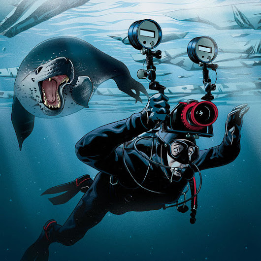 What It's Like To Be Chased By A Leopard Seal