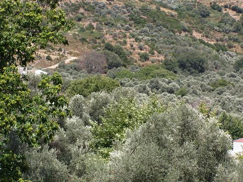 elos valley hania chania